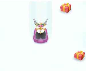 Pet Sledding, 2 Player Pet Game, Play Pet Sledding Game at twoplayer-game.com.,Play online free game.